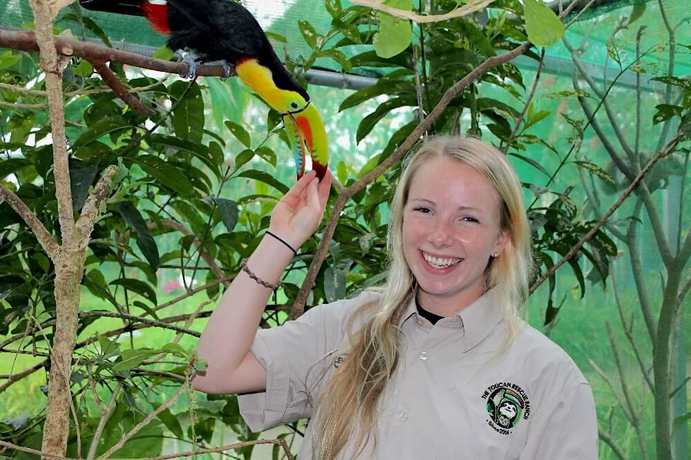 Volunteer with Animals in Costa Rica