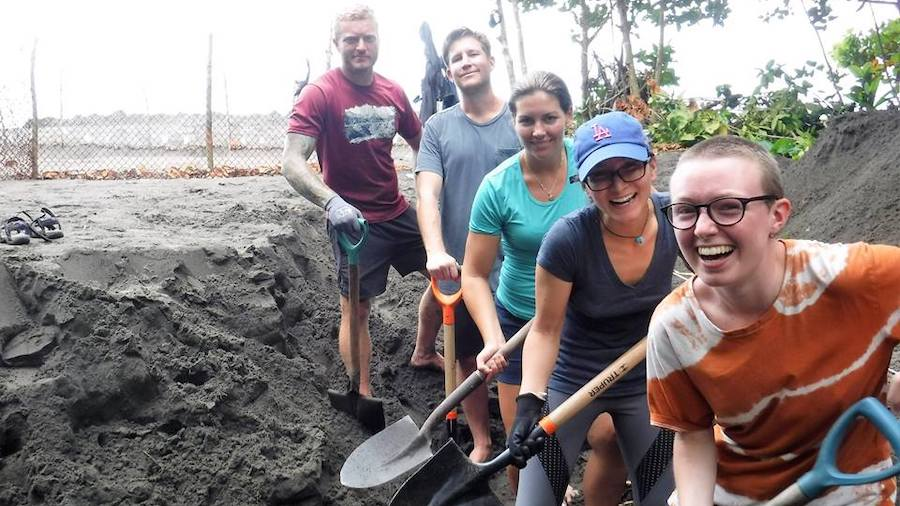 Volunteer in Costa Rica working with letherback sea turtles